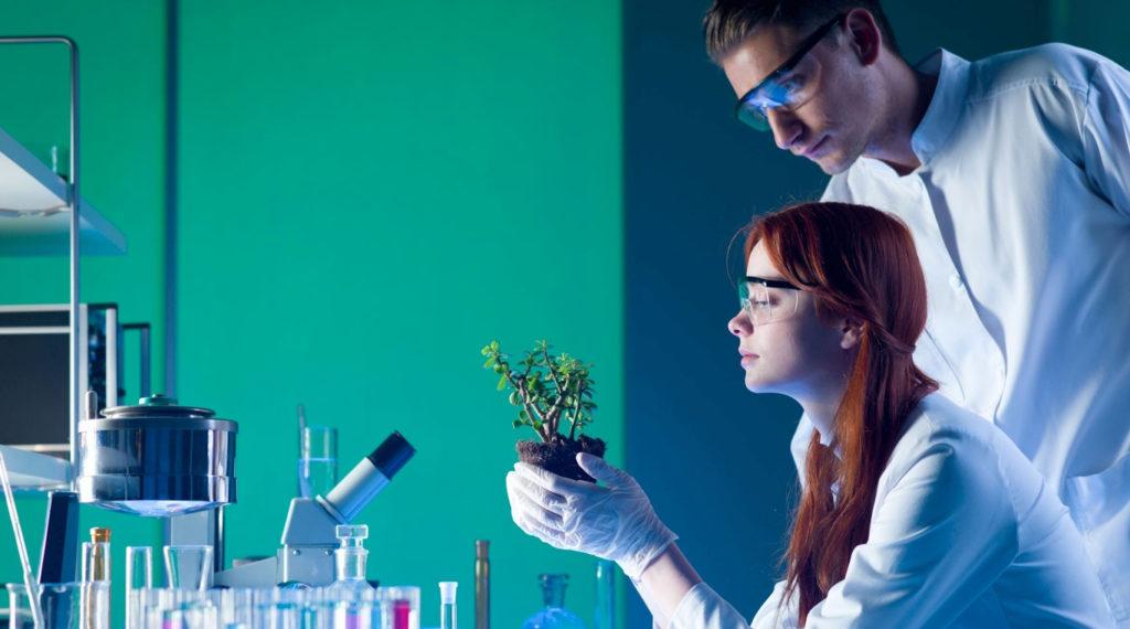 Медицинский эколог