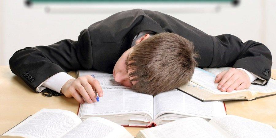 Реформы образования дадут стране только поколение неврастеников