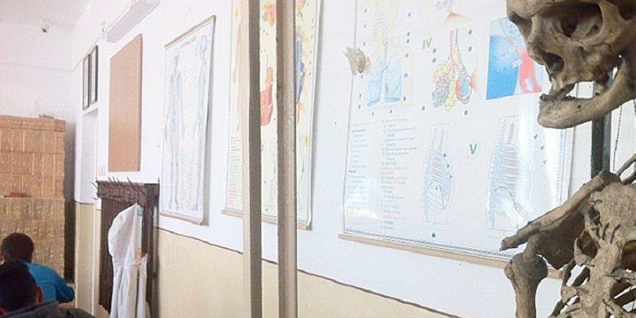 Румынские школьники изучают биологию по скелету бывшего директора школы